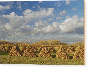 Stacked Hay Bales In Field, Selkirk Wood Print by Dave Reede