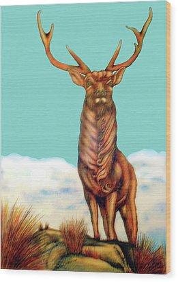 Stag Wood Print by Barbara Stirrup