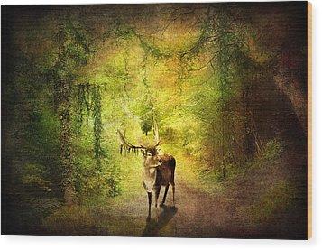 Stag Wood Print by Svetlana Sewell