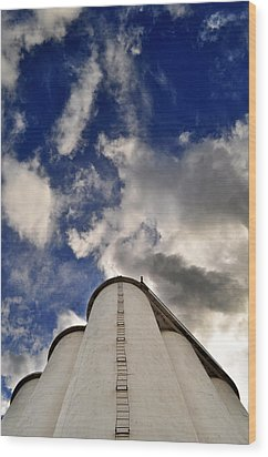 Wood Print featuring the photograph Stair-way-to-heaven by Brian Duram
