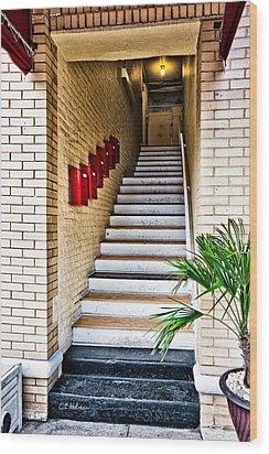 Stairway Wood Print by Christopher Holmes