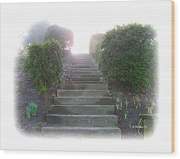 Stairway To A New Beginning Wood Print by Brian Wallace