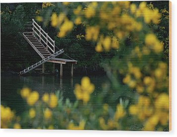Wood Print featuring the photograph Stairway To Heaven by Pedro Cardona