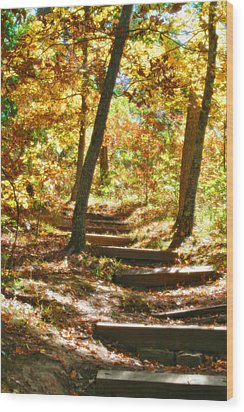 Wood Print featuring the photograph Stairway To Heaven by Peggy Franz