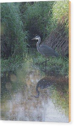 Stalking Wood Print by Rod Wiens