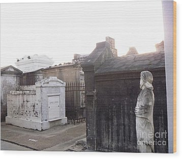 Wood Print featuring the photograph Standing Guard by Alys Caviness-Gober