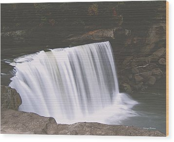 Wood Print featuring the photograph Standing In Motion  Cumberland Falls 01 by George Bostian