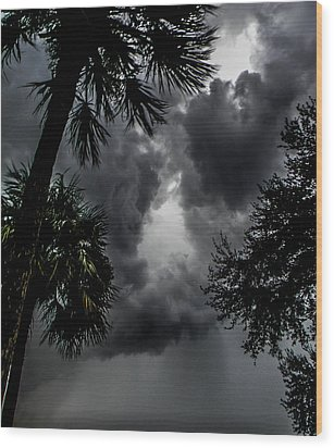 Standing Through The Storm Wood Print by Christy Usilton
