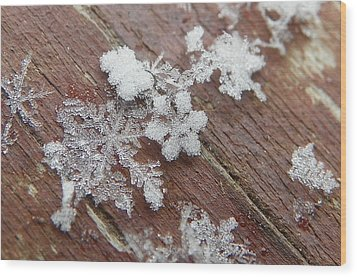 Star Shaped Snow Flakes Wood Print by Chad and Stacey Hall