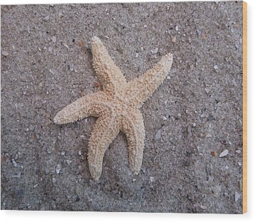 Starfish Wood Print by Chad and Stacey Hall