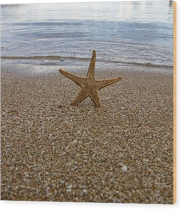 Starfish Wood Print by Stelios Kleanthous