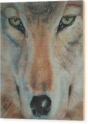 Staring Contest Wood Print by Joanna Gates