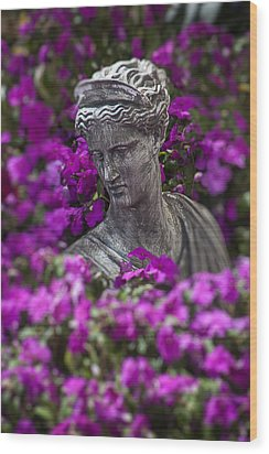 Statue In The Garden Wood Print by Garry Gay