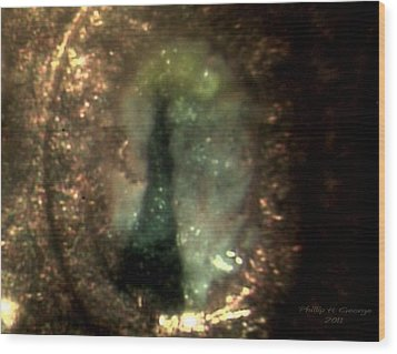 Statue Of Liberty Micro Photo 6 Wood Print by Phillip H George