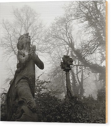 Statue Wood Print by Robert Dalton