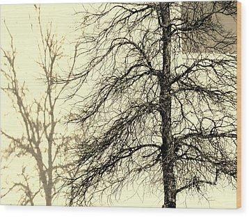 Steiglich Steichen And Pratt Wood Print by Joe Jake Pratt