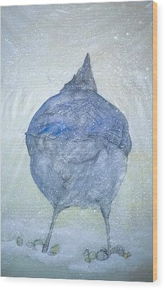 Stellar Jay From  Back Wood Print by Debbi Saccomanno Chan