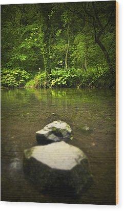 Stepping Stones Wood Print by Svetlana Sewell
