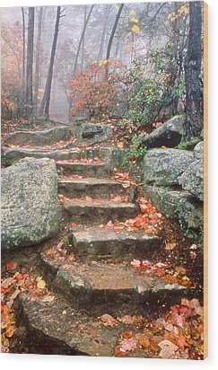 Steps Cloudland Canyon Wood Print