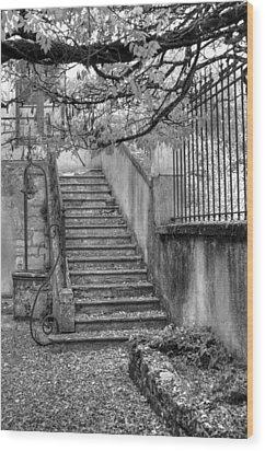 Steps Wood Print by Jan Carr