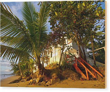 Steps To The Beach Wood Print by Tim Fitzwater
