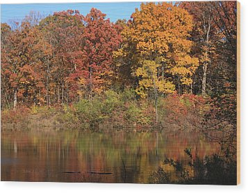 Sterling Pond Wood Print by Lyle Hatch