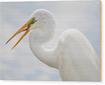 Sticking Out His Tongue Wood Print by Paulette Thomas