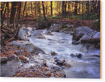 Wood Print featuring the photograph Stickney Brook by Tom Singleton