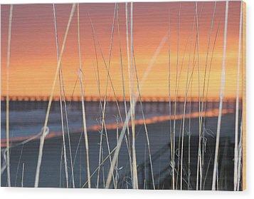 Sticks Wood Print by Static Studios