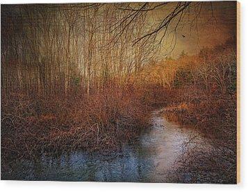 Still By The Stream Wood Print by Robin-Lee Vieira