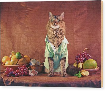 Wood Print featuring the photograph Still Life With Cat by Joann Biondi