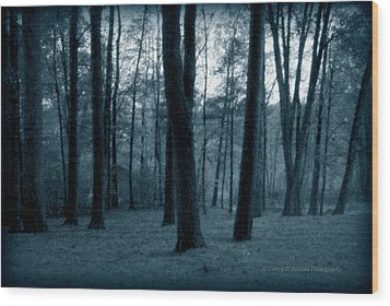 Still Of The Night Wood Print by Laura DAddona