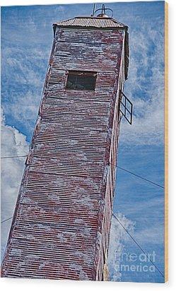 Still Standing Wood Print by Ken Williams