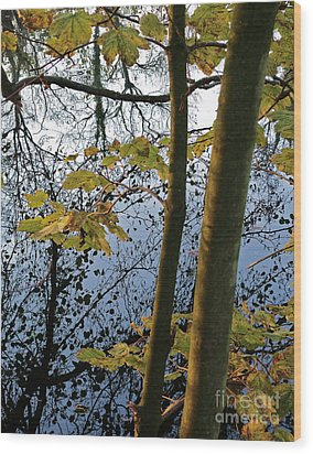 Still Waters In The Fall Wood Print