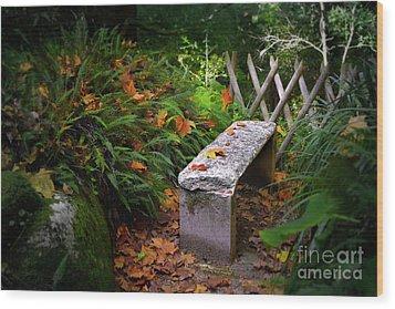 Stone Bench Wood Print by Carlos Caetano