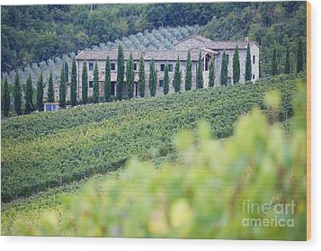 Stone Farmhouse And Vineyard Wood Print by Jeremy Woodhouse