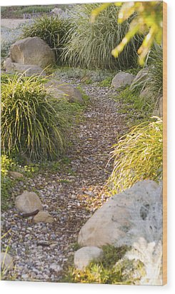 Stone Path Through Garden Wood Print by James Forte