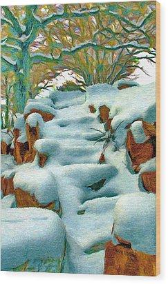 Stone Steps In Winter Wood Print by Jeff Kolker