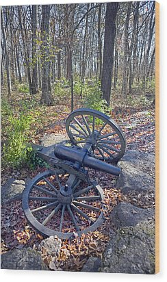 Stones River Battlefield Wood Print by Luc Novovitch