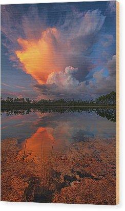 Storm Clouds At Dawn Wood Print by Claudia Domenig