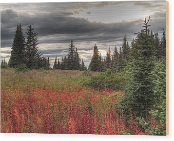 Storm Clouds In Fall Wood Print by Michele Cornelius