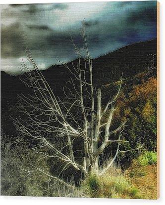 Storm Over The Jemez Mountains Wood Print by Ellen Heaverlo