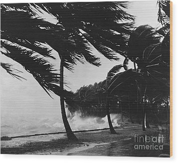 Storm Surge Wood Print by Omikron