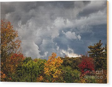 Storms Coming Wood Print by Ronald Lutz