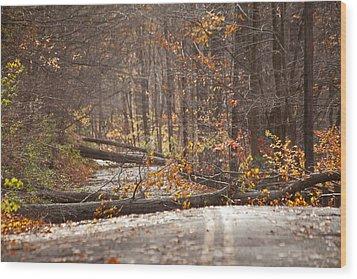 Stormy Autumn Wood Print by Karol Livote