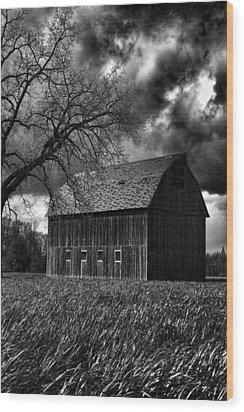 Stormy Wood Print by Bonnie Bruno