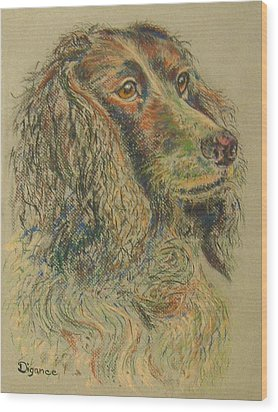 Straight From The Field - Spaniel Portrait Wood Print