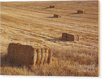 Straw Field Wood Print by Carlos Caetano
