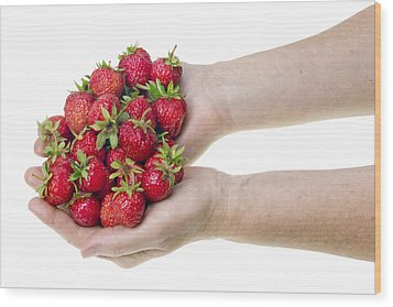 Strawberries In Hands Wood Print