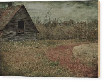 Strawberry Lane  Wood Print by Jerry Cordeiro